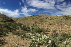 Mescal-Canyon-1